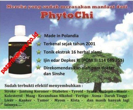 Phytochi sebagai obat herbal alami