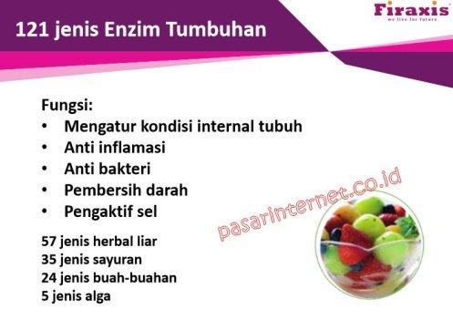 I-DNA OCTO STEM 35 FIRAXIS