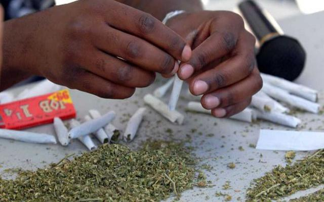 Oakland Establishes Drug War Reparations and Passes Marijuana Equity Program.