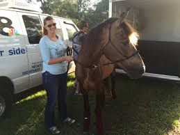Pasco couple finds, rescues beloved horse years after being forced to part.