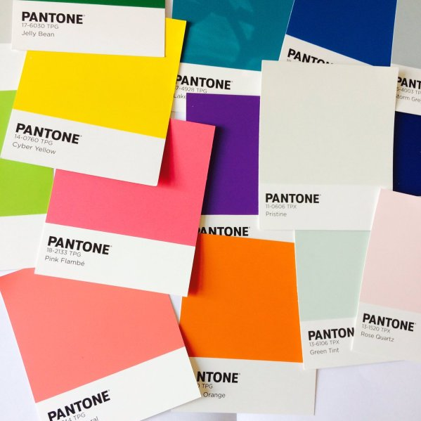 Scattered Pantone paint swatches in different colours