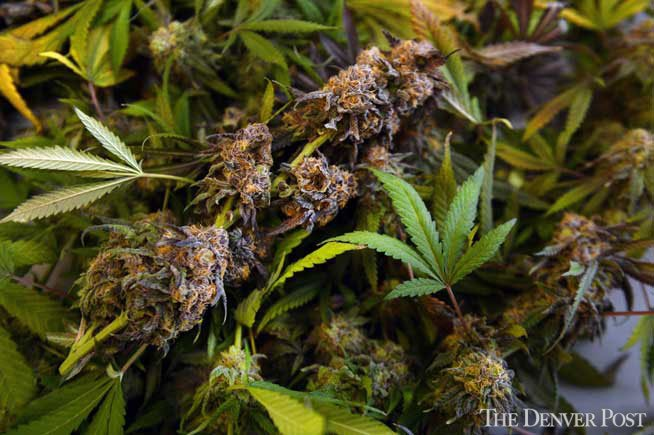 Vermont's gov. has signed a law expanding the state's medical marijuana bill. The deets: