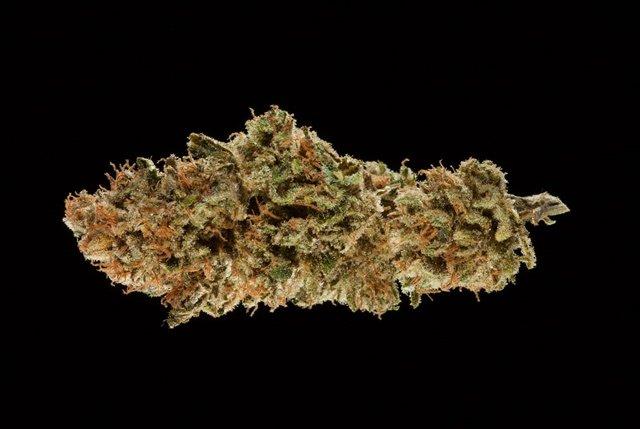 #WATCH 2016 Michigan Medical Cannabis Cup: CBD Flower Entries.
