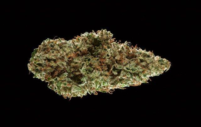 #WATCH 2016 Michigan Medical Cannabis Cup: Sativa Flower Entries.