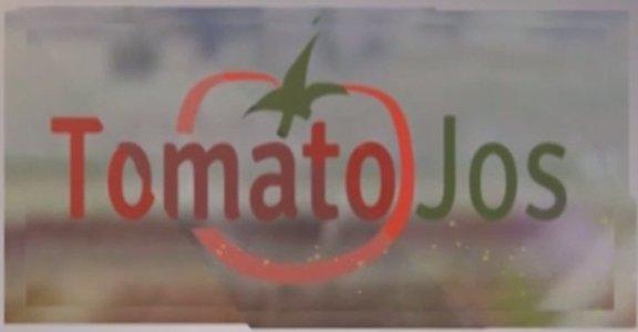 Tomato Jos