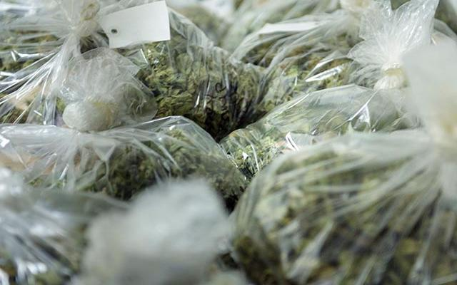 That's a lot of green. 🌳 Police: Man Died While Unloading $12 Million in Marijjuana. Story 👉