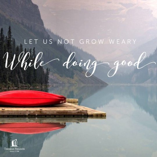 Image result for weary in doing good