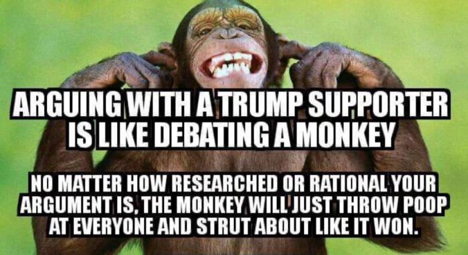 Image result for Arguing with Trump supporter is like debating a monkey- No matter how researched or rational your argument is the monkey will just throw poop at everyone and strut about like it won.