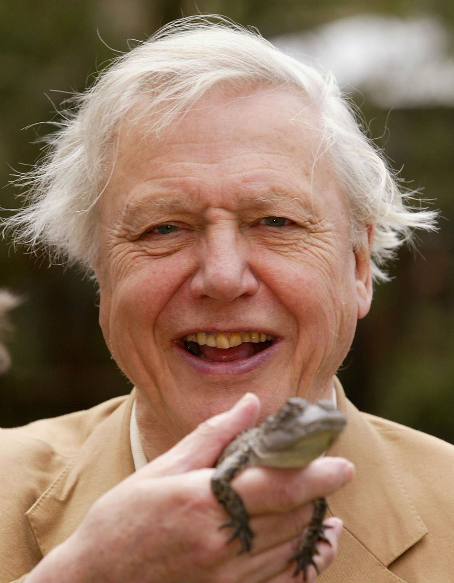 Pokémon Go narrated by David Attenborough is as good as it sounds