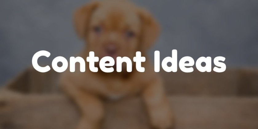 Have a content idea, but, don't have the time to create it? Share it here  #AngularJS #HN