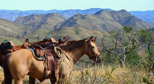 Learn about the best horseback tours in #Mexico.