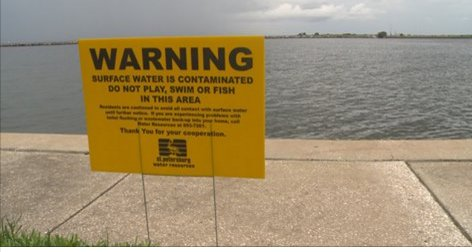 #10Investigates  St Pete may once again  to dump partially treated raw sewage into the bay