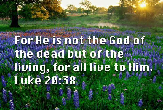 Image result for god of the living not the dead luke 20:38
