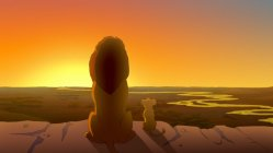 Image result for everything the light touches