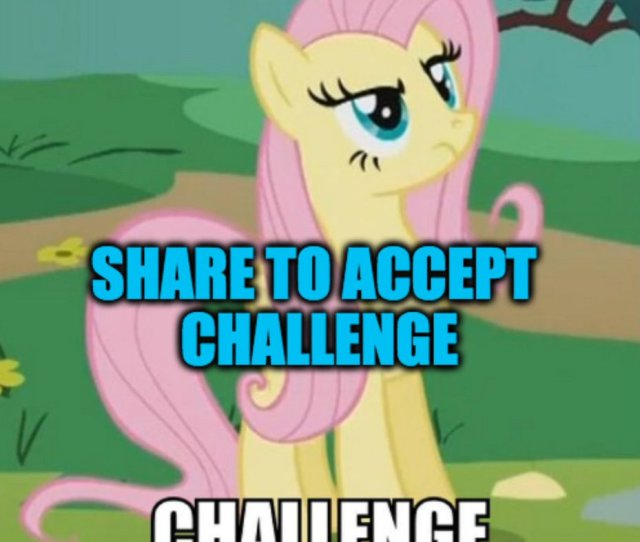 Bronymate On Twitter Accept The Challenge And Go To Https T Co B6eduekwru Brony