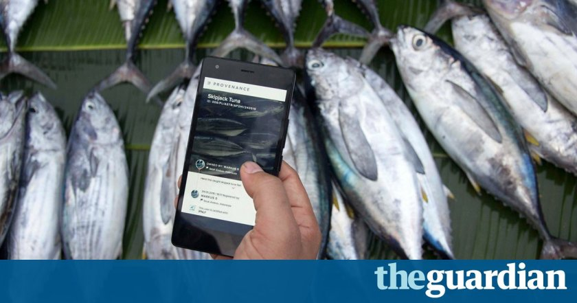 Blockchain technology trialled to tackle slavery in the fishing industry @tom_levitt