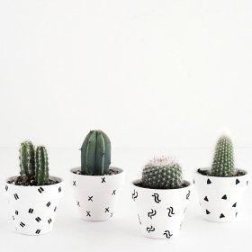 DIY- Mini Patterned Plant Pots diy home design