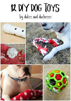 Entertain your dog with these simple DIY dog toys!