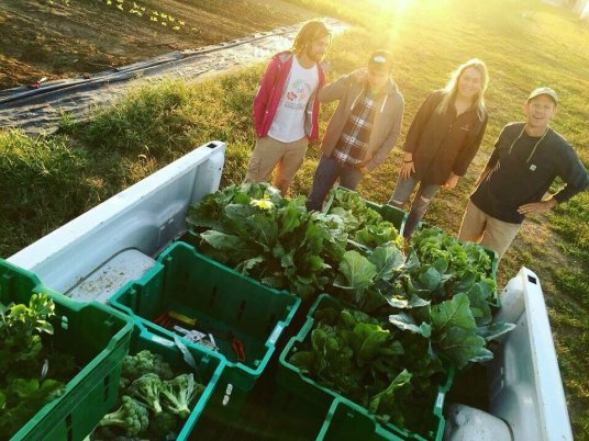 Image result for uky horticulture club