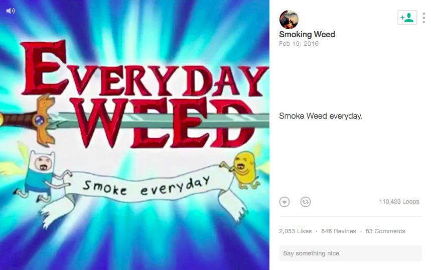 #Vine is dead, but it had a good run. Watch 10 great stoner vines to remember.