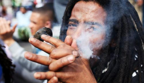 IFP want cannabis legalised  | Independent Online