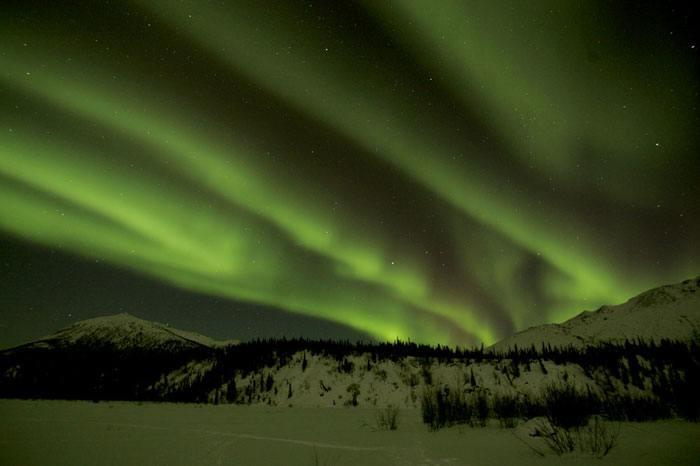 Green Light in the Golden Heart City: Dispensaries Open in Fairbanks