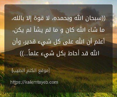 أم ناصر غياب مؤقت On Twitter