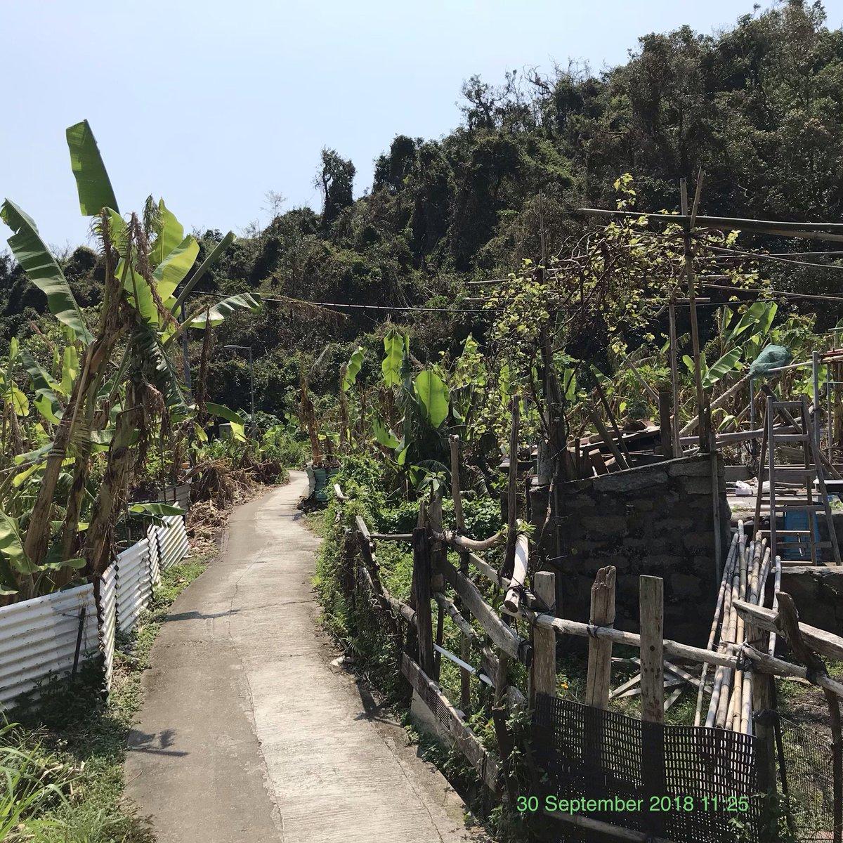 Mo Tat village & beach on Lamma island