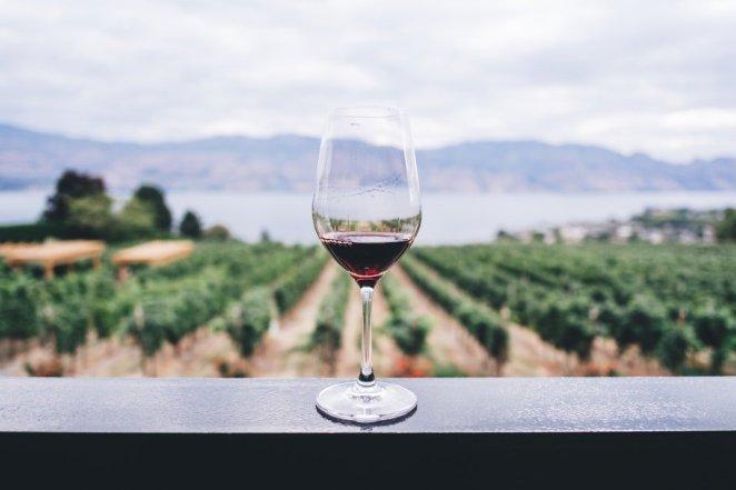 "Futourist on Twitter: ""TRAVEL FACT🌎 Longest continuous wine route ..."