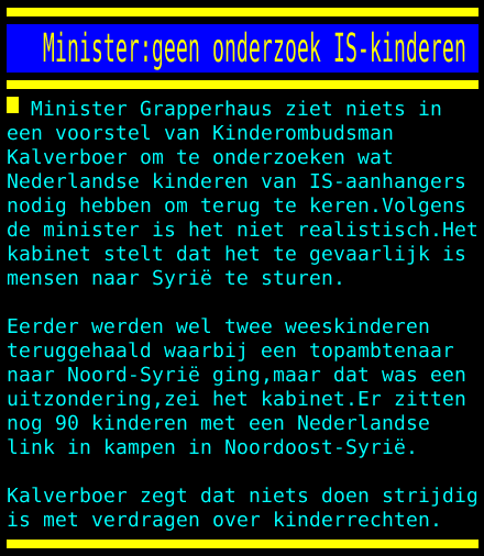 IS-strijders