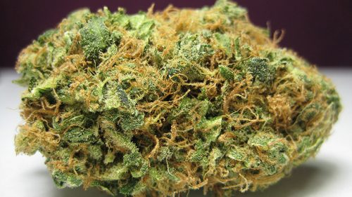 Atlanta City Council to Reconsider Decriminalizing #Marijuana