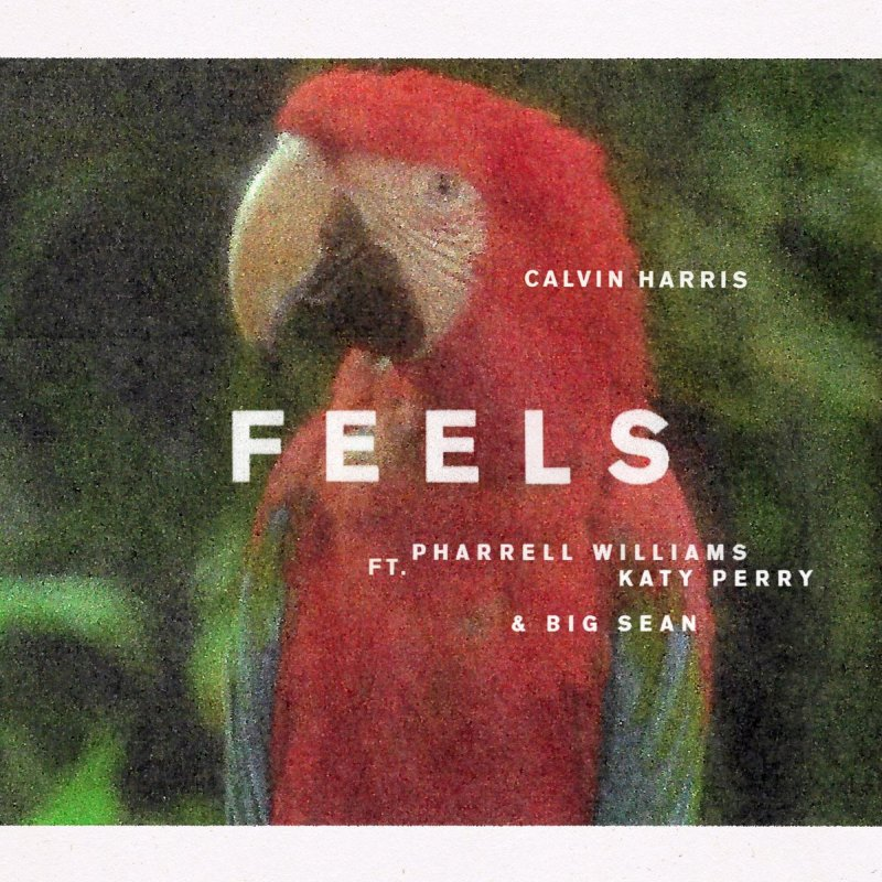 Calvin Harris Feels Lyrics