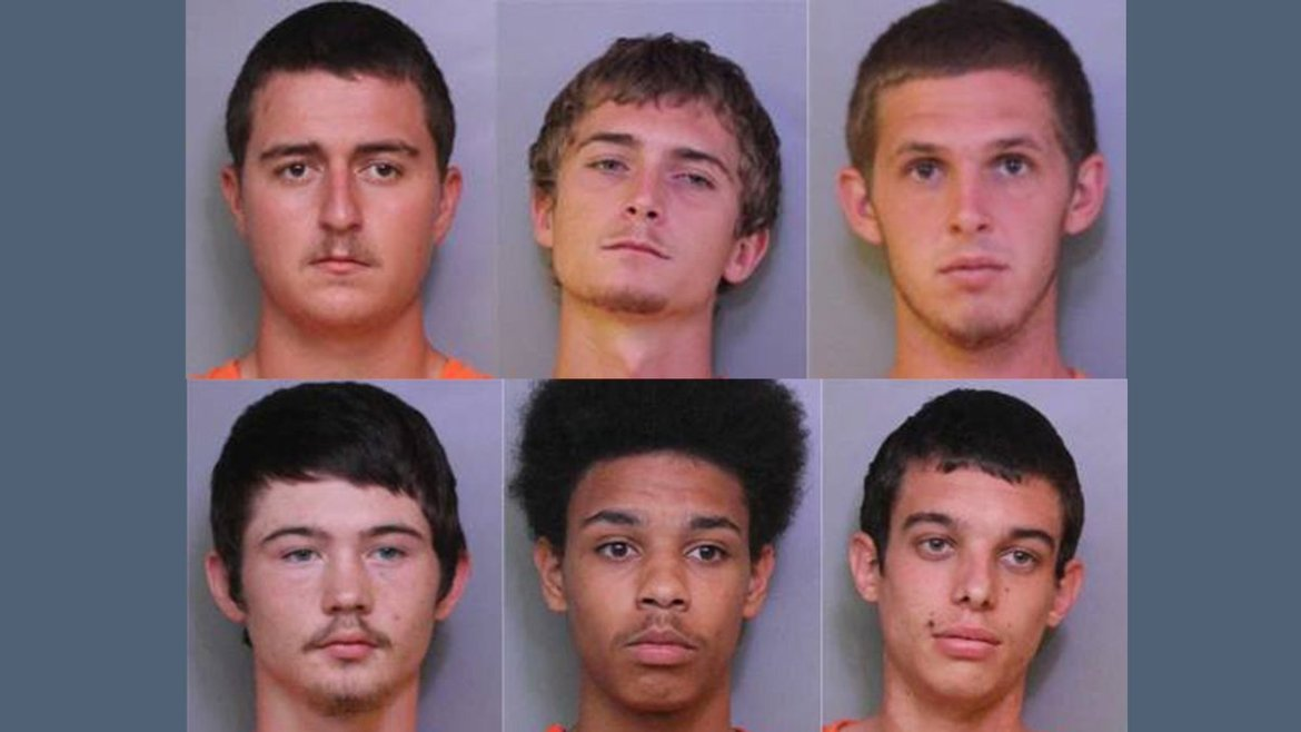 Six charged in Lakeland cow thefts; 8 cows still missing.