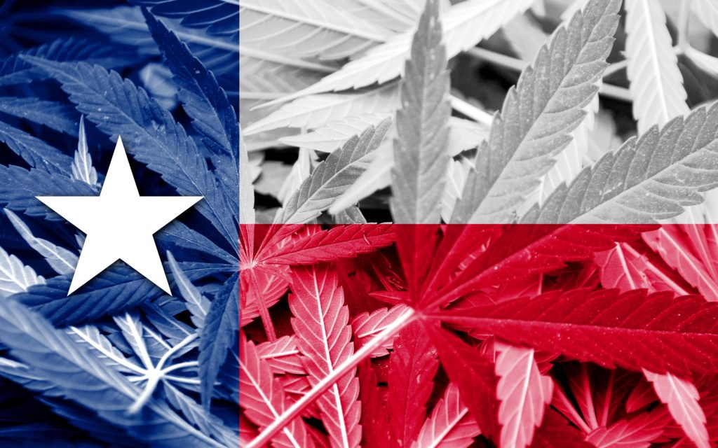 Creeper Pace for Texas Medical Marijuana Program.