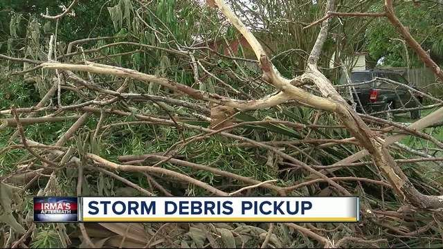 Hurricane Irma debris: How to make sure your county picks up your stuff