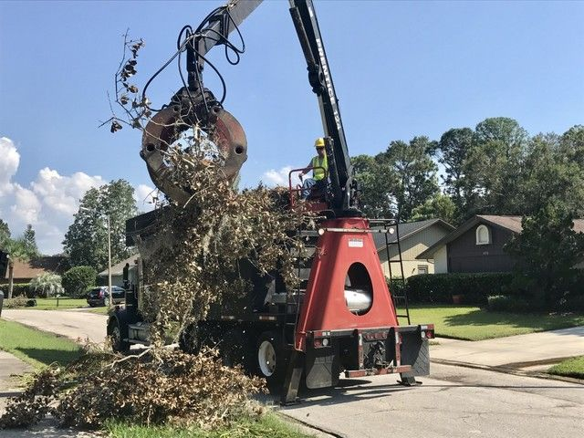 Irma debris causing allergies, eye injuries