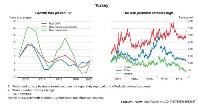 Картинки по запросу oecd turkey
