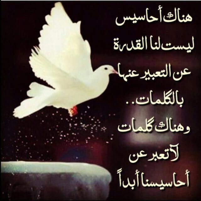 رب اشرح لي صدري ويسر لي امري At Abdo236 Twitter