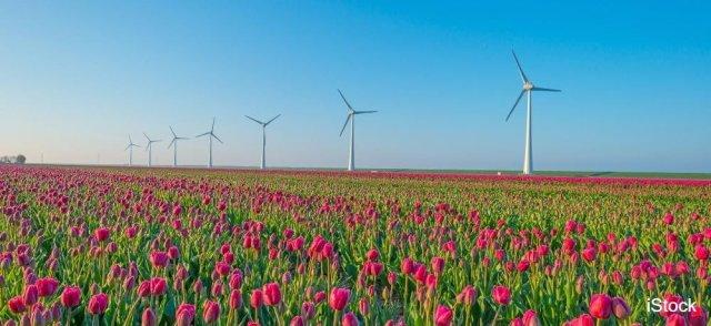 test Twitter Media - Waarom de huidige windmolens helemaal niet zo duurzaam zijn  📰 @trouw 👉 https://t.co/iFJuirRX3R https://t.co/PcKBg6o3zc