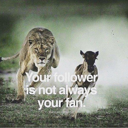 """Niskize on Twitter: """"Always distinguish real friends, from followers from  fans of your life. Do not tell a fan what you should tell a friend. Keep  your personal life guarded from some"""