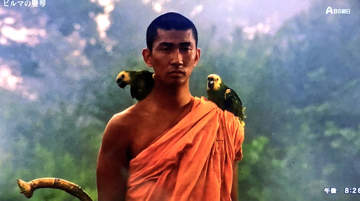 "টুইটারে ☺︎まー☺︎™: ""オウムを2匹肩に乗せています この2匹は兄弟設定です #ビルマの竪琴… """