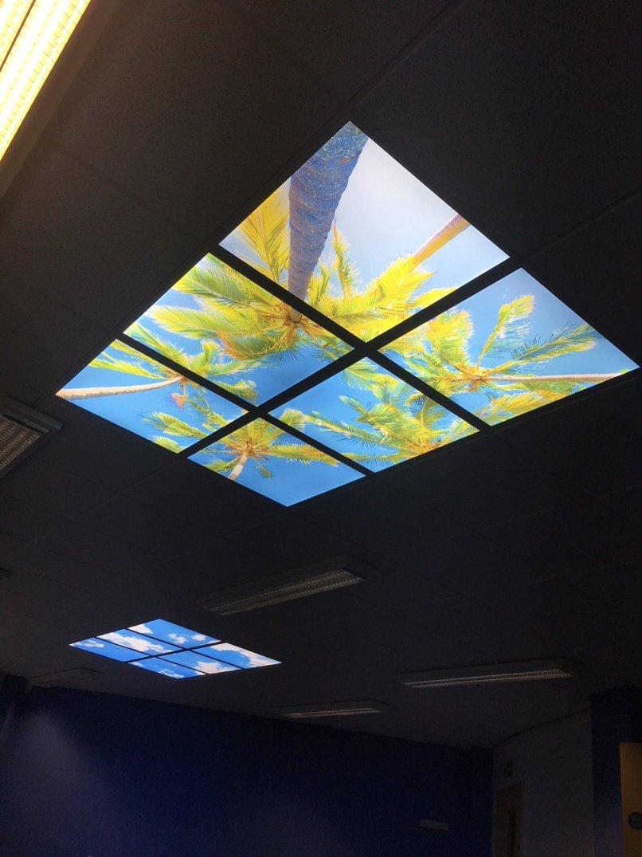 Illuminated Ceiling Tiles Lightneasy