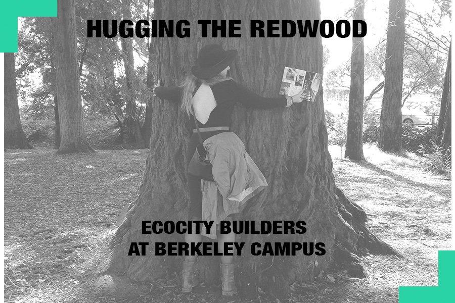 EcocityBuilder photo