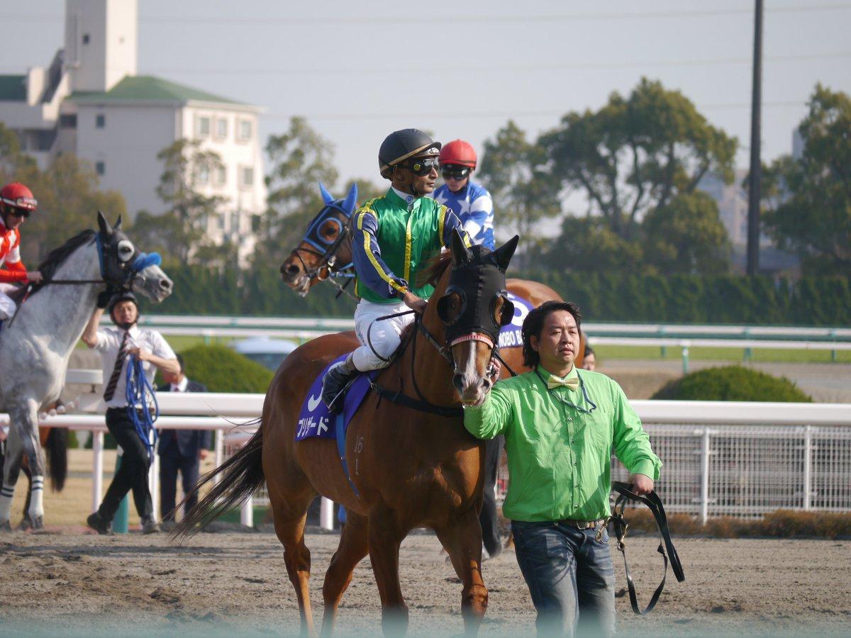 test ツイッターメディア - 昨日の高松宮記念は海外からのお客様ブリザード号(香港・K.ティータン騎手/P.イウ厩舎)が来日。初の左回りも苦にせず5着と大健闘でした、また日本で走るのを期待しています。 https://t.co/7FytpRpXfW