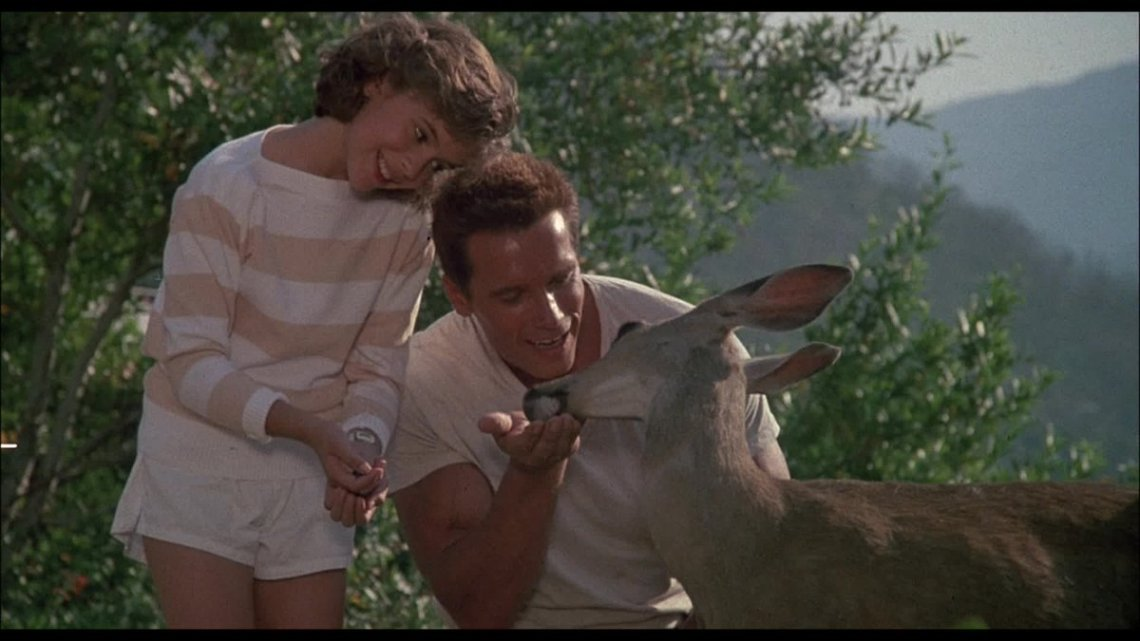 """Kelly Turnbull on Twitter: """"The intro to Commando where the Schwarzenegger  character does a montage of normal dad things like feeding deer and making  sandwiches and collecting tree trunks is very underrated.…"""