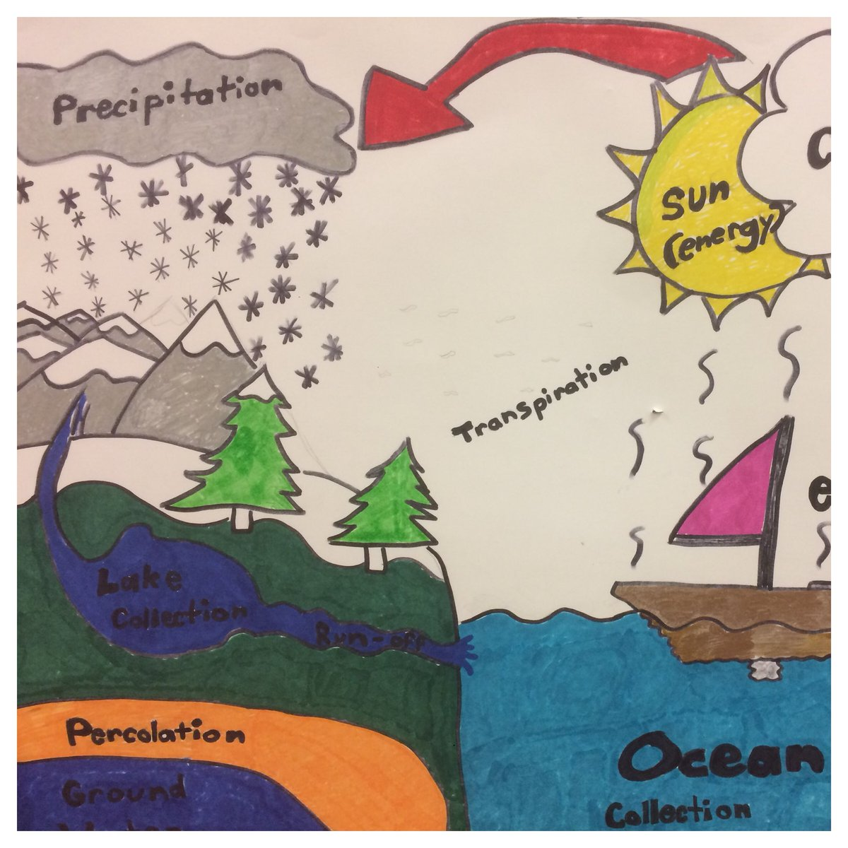Collins Middle On Twitter 7th Grade Water Cycle Posters