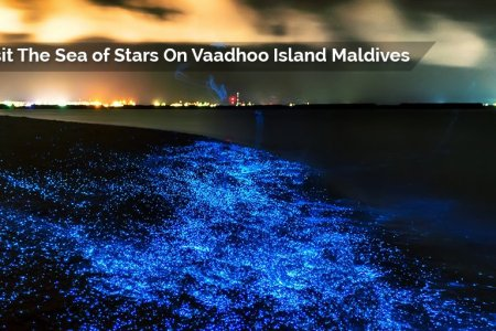 Interior vaadhoo island tourist website full hd pictures 4k ultra vaadhoo island maldives glowing waves k pictures k pictures bright bloom of amazing maldives glowing beach resort beach and ski resort ideas amazing publicscrutiny Image collections