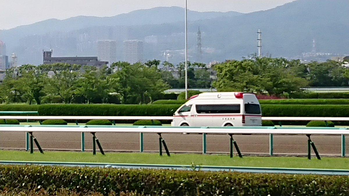 test ツイッターメディア - 京都競馬場から急遽駆けてくれましたよー! https://t.co/RNipYIGKiG