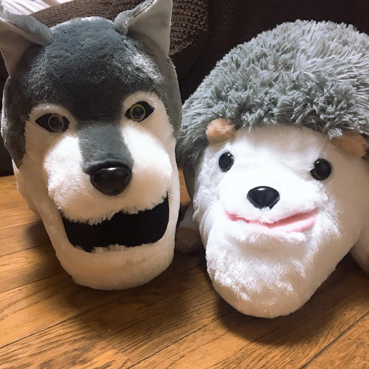 test ツイッターメディア - 家族からの誕プレ〜。 シャクレルプラネットのオオカミとハリネズミ! あとはANNA SUI!!!! https://t.co/3pnURWNBxZ
