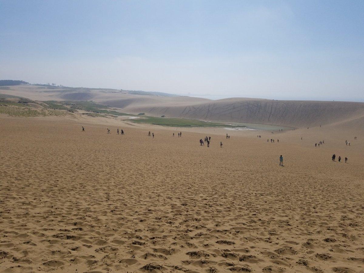 test ツイッターメディア - 鳥取に行ったら外せないスポット、鳥取砂丘に10年ぶりくらいに訪れる。昔はラジコンをしてる人が沢山いたんだけど、禁止になったみたい。青空だったので、より鮮明に綺麗に見えました😄雨の影響もあるのか、砂丘に湖が出来ている光景は初めて見ました😳 https://t.co/fXtbB44lz7